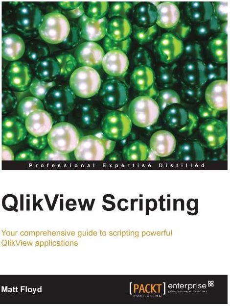 Einsteiger Buch QlikView Scripting