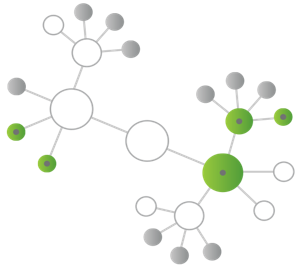Multiple Datenquellen mit Qlik